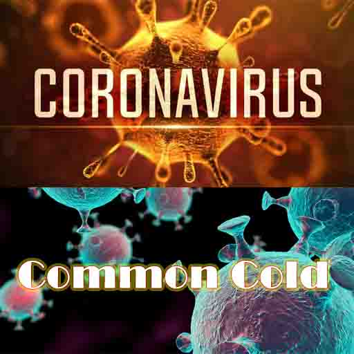 Corona or Common Cold
